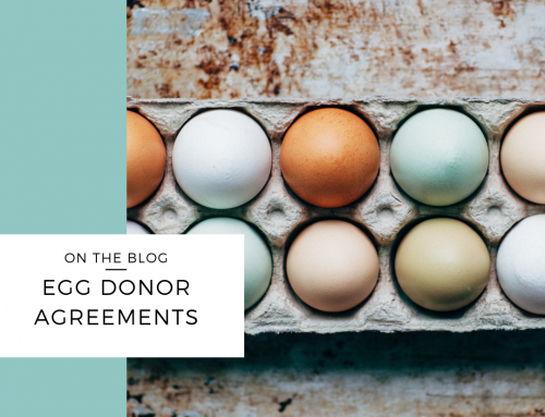 Egg Donor Agreements