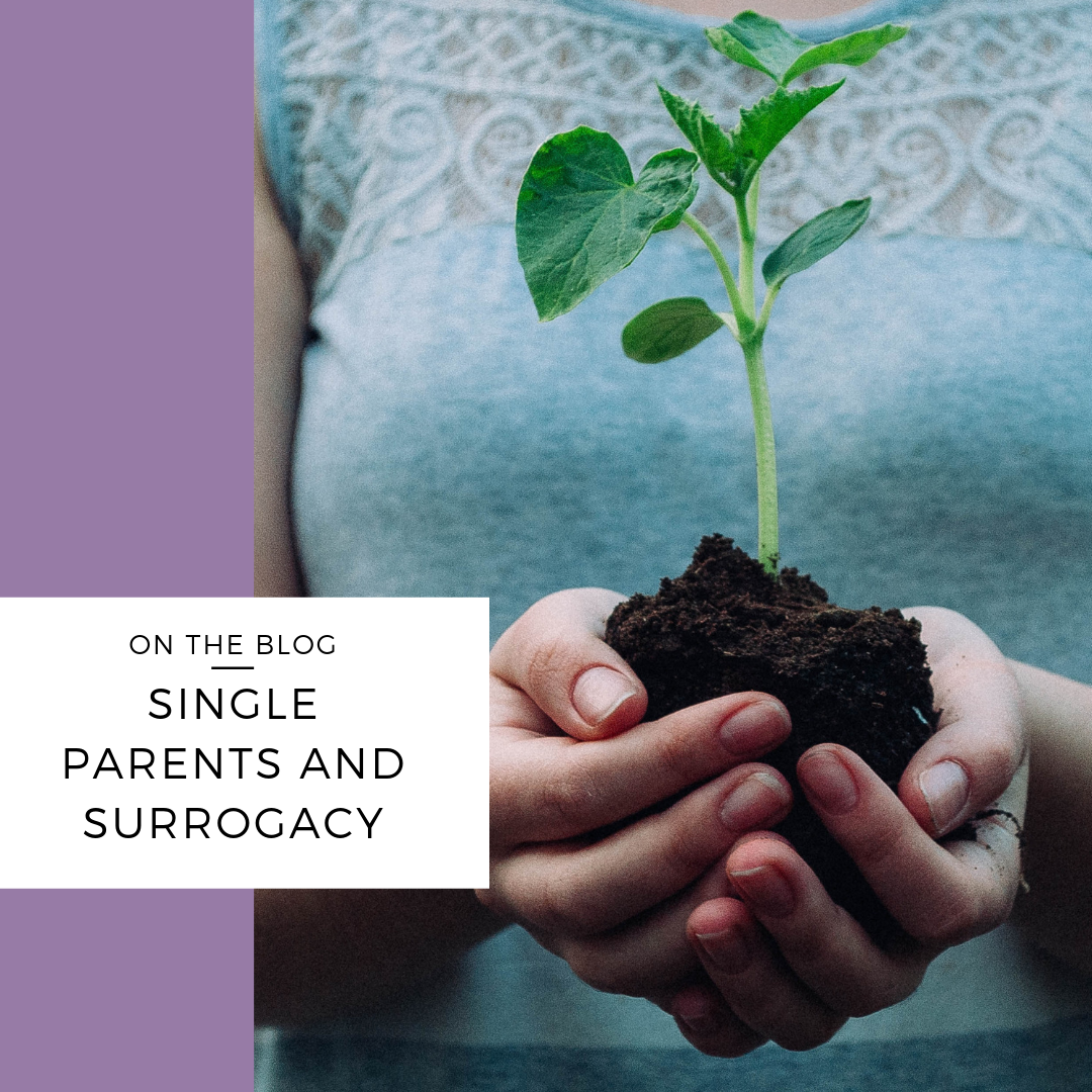 single surrogacy