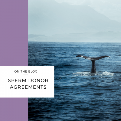 sperm donor agreements