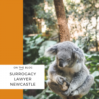 surrogacy lawyer newcastle