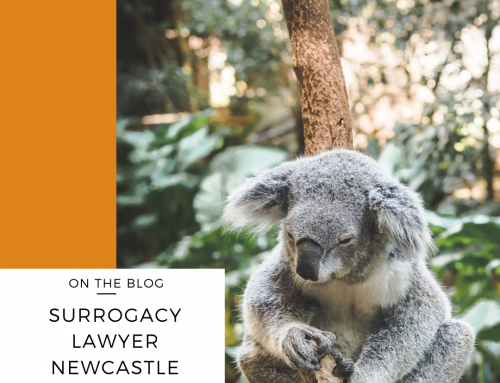Surrogacy Lawyer | Newcastle