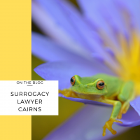 surrogacy lawyer cairns