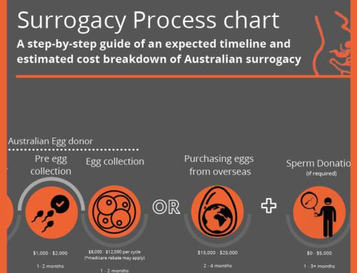 The Surrogacy Process Chart